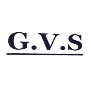 جی وی اس GVS